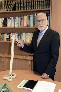 Beschwerdefrei leben dank Schlangengift-Therapie: Sanfte Hilfe bei chronischen Schmerzen