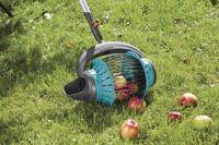 Die Früchte des Erfolgs – Erntezeit im Garten