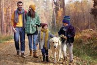 Aktiv gegen Schnupfen, Husten & Co.: Erkältungen vorbeugen