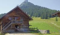 Funkelnder Sommerurlaub in Tirol