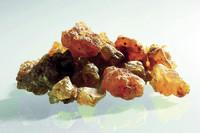 Neue Forschung: Myrrhe vermindert entzündliche Prozesse