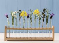 Wände mit Wohlfühlfaktor: Stimmungsvolle Farbakzente mit Naturfarben setzen