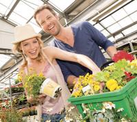 Farbenprächtige Blumen-Neuheiten zum Pflanzen: An die Töpfe, fertig, los!