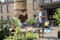 Viel Grünes auf kleinstem Raum für urbane Hobbygärtner