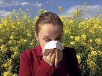 Allergie? Nicht mit mir! Aufatmen für Allergiker