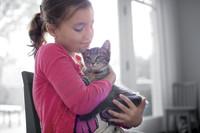 Die größten Fehler im Umgang mit Haustieren