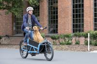 Lastenräder: Das sollten Radler wissen