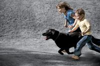 Der richtige Umgang mit Hund, Katze & Co.
